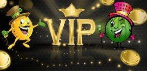Pocket Fruity Casino VIP